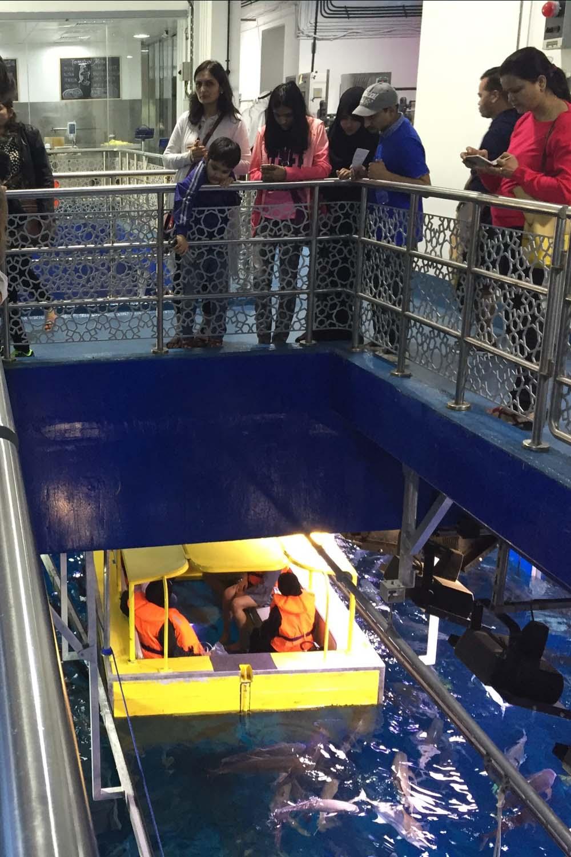colourclub-dubai-mall-aquarium10
