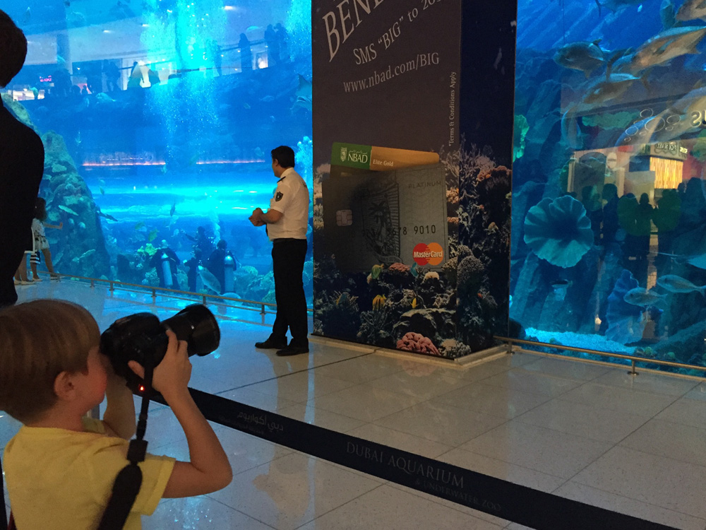 colourclub-dubai-mall-aquarium6